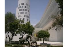 EGIC - Tecnológico de Monterrey Estado de México Centro Foto