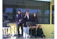 Centro Instituto de Estudios Superiores Dante Alighieri de Tlaxcala AC Tlaxcala Capital Tlaxcala