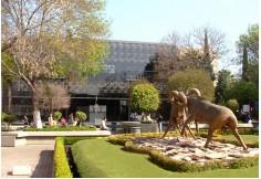 Foto Centro Tecnológico de Monterrey Campus Estado de México Atizapán De Zaragoza