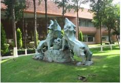 Centro Universidad Iberoamericana Álvaro Obregón CDMX - Ciudad de México