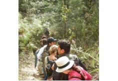 Foto Universidad del Medio Ambiente Estado de México