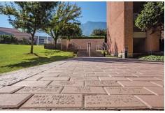 UDEM Universidad de Monterrey
