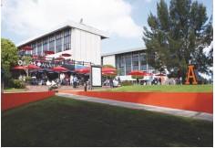 Universidad Anáhuac del Sur