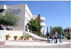 Foto Centro Tecnológico de Monterrey - Educación Continua Benito Juárez - Distrito Federal