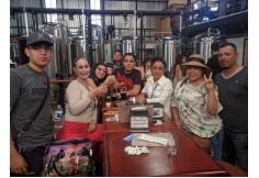 ESCOMEX Universidad de Negocios Mexicalí Baja California Centro