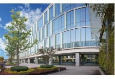 IPETH Instituto Profesional en Terapias y Humanidades