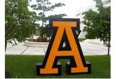 Foto Centro Universidad Anáhuac - Sede Cancún México