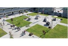 Foto Universidad de Especialidades Tepic