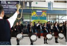 Universidad Cuauhtémoc San Luis Potosí San Luis Potosí - San Luis Potosí San Luis Potosi México