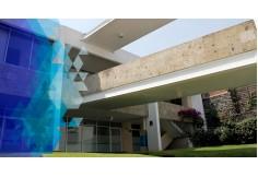 Universidad Motolinia del Pedregal Álvaro Obregón Centro Foto