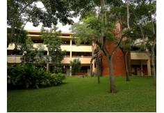 Foto Centro Universidad Olmeca Comalcalco