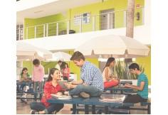 Foto Universidad Tecmilenio