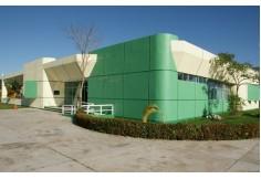 Centro Universidad Tecnológica del Usumacinta México Foto