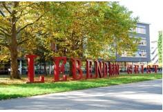 Foto Universität Heidelberg, Dezernat Internationale Beziehungen Chile México