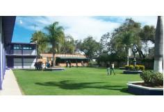 UPI - Universidad Privada de Irapuato Guanajuato Centro