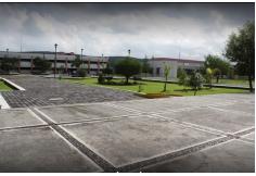 Foto Centro UTM - Universidad Tecnológica de Morelia Michoacán