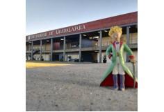 Centro UDG - Universidad de Guadalajara - Sede Guadalajara Guadalajara Jalisco