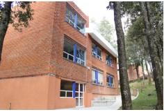 Universidad Albert Einstein