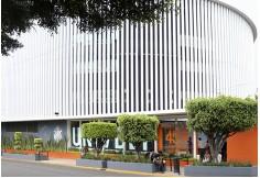 Universidad del Desarrollo Empresarial y Pedagógico Distrito Federal México Foto