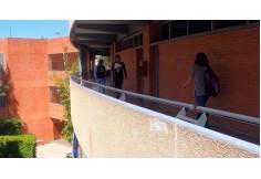 Amerike – Instituto de Estudios Universitarios Guadalajara Foto