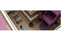 Foto Universidad del Sur