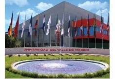 UVM Universidad del Valle de México